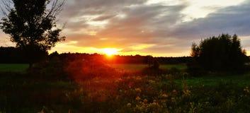 Vibraphone de coucher du soleil photo libre de droits