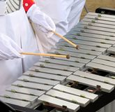 Vibraphone Player. A female player hits the bars with two mallets Royalty Free Stock Photo