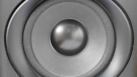 Vibrazione della spigola dell'altoparlante dell'altoparlante per basse frequenze archivi video