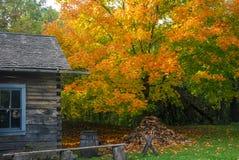 Vibrerande Autumn Colors på den gamla världen Wisconsin fotografering för bildbyråer