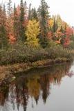 Vibrerande Autumn Colors Reflecting på Wisconsinet River i landnolla 'sjöar Wisconsin fotografering för bildbyråer