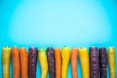 Vibrerande färgrika morötter på blå bakgrund royaltyfri fotografi