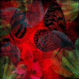 vibrerande fjärilsgrungescharlakansrött Arkivfoton