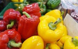 Vibrerande grönsaker för sund livsstil Royaltyfria Bilder