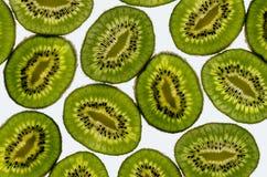 Vibrerande kiwi Fotografering för Bildbyråer