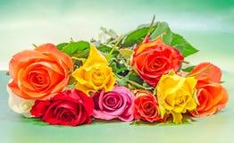Vibrerande kulöra (rött, gult, orange, vit) rosor blommar, stänger sig upp, buketten, den blom- ordningen, grön bakgrund Arkivbilder