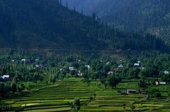 Vibrerande landskap nära Srinagar-6 Arkivbild