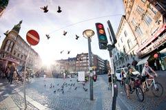 Vibrerande liv i Köpenhamn royaltyfria foton