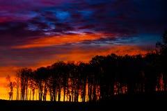 Vibrerande morgonsoluppgång Fotografering för Bildbyråer