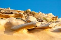Vibrerande orange sandsten eroderade in i abstrakt begrepp ben-som former I Royaltyfria Bilder