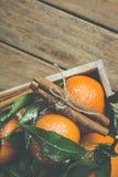 Vibrerande orange tangerin på filialgräsplan lämnar kanelbruna pinnar i askträbakgrund Jul Royaltyfri Bild