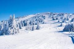Vibrerande panorama av lutningen på skidar semesterorten Kopaonik, Serbien, folket som skidar, snöträd, blå himmel Royaltyfri Fotografi