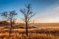vibrerande röd solnedgång för färgliggande Fotografering för Bildbyråer