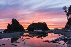 Vibrerande Ruby Beach Sunset Silhouette Fotografering för Bildbyråer
