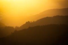 Vibrerande solnedgång i den svarta skogen, Tyskland Arkivfoton