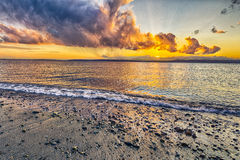 Vibrerande solnedgång på stranden Royaltyfri Foto
