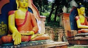 Vibrierende Farbe-Buddha-Statuen im Wald Lizenzfreie Stockbilder