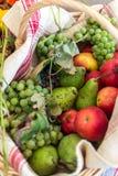 Vibrierende Früchte im Korb stockfotos