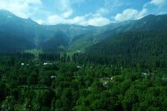 Vibrierende Landschaft nahe Srinagar-5 Stockbild