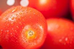 Vibrierende Rom-Tomaten im Colander mit Wasser Lizenzfreie Stockfotos