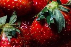 Vibrierende, rote Erdbeeren schließen oben Lizenzfreie Stockfotos