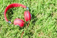 Vibrierende rote Kopfhörer auf frischer Lichtung Stockbild