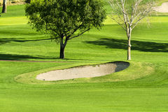 Vibrierender Golfplatz- und Sandfang stockfotos