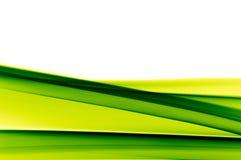 Vibrierender grüner Hintergrund auf Weiß Stockfoto