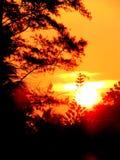 Vibrierendes Sonnenlicht mit Himmel des orange Rotes während der Dämmerungsstunden des Morgensonnenaufgangs und Abendsonnenunterg Lizenzfreies Stockbild