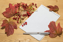 Viburnum berries and leaves with a notebook and pen. Stock Photo