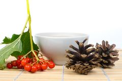 Viburnum berries, pine cones and tea cup. On bamboo table Royalty Free Stock Photo
