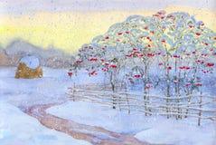 Viburnum de buisson de neige Image stock