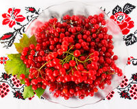 Viburnum on embroidered cross-stitch pattern. Top view Royalty Free Stock Photos