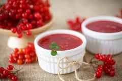 Viburnum jam Stock Photo
