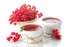 Viburnum jam Royalty Free Stock Images