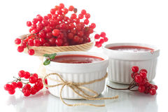 Viburnum jam Stock Photo