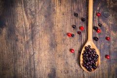 Viburnum och svart vinbär på träbakgrund Royaltyfria Foton