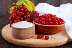 Viburnum rouge dans une cuvette en céramique, sucre, un groupe de baies Image stock