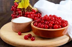 Viburnum rouge dans une cuvette en céramique, sucre, un groupe de baies pour le thé Photographie stock libre de droits