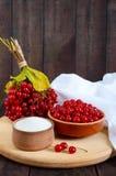Viburnum rouge dans une cuvette en céramique, sucre, un groupe de baies pour le thé Image libre de droits