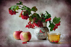 Viburnum and tea. The branches of viburnum stand in a vase alongside cup of tea and apples stock images