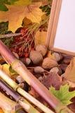 Viburnum und Kastanie auf Hintergrundherbstkonzept der hölzernen Bretter der Weinlese Lizenzfreie Stockfotografie