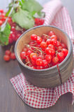Viburnum. In wooden bowl on a table stock photos
