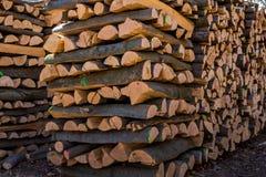 Vice-cut tree trunks Royalty Free Stock Photo