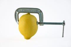 Vice del limone Immagini Stock