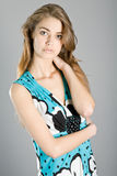 Vice miss Russia 2011 Stock Images