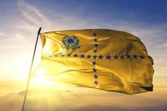 Vice-presidente da tela de pano de matéria têxtil da bandeira de Brasil que acena na névoa superior da névoa do nascer do sol ilustração do vetor