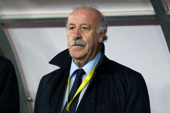 Vicente del Bosque Royalty Free Stock Image