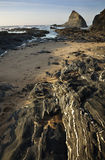 Vicentina Coast in Portugal Stock Images