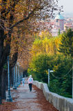 Vicenza hills Royalty Free Stock Images